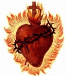 Heart_the_Sacred_Heart_of_Christ